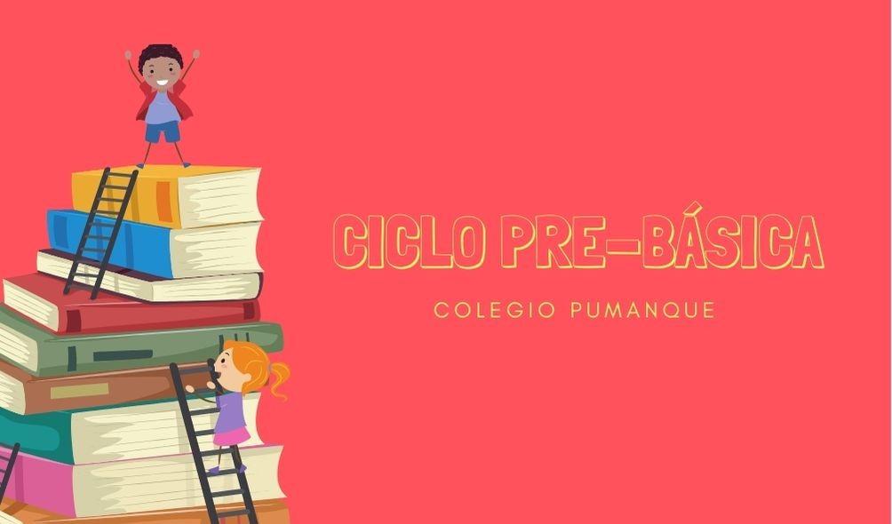 Colegio Pumanque